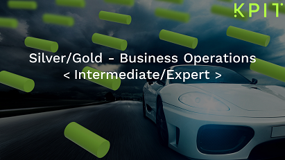 Silver/Gold - Business Operations - KAIZEN CEIPRMII008